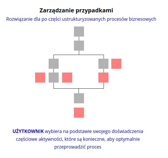 Schemat zarządzania przypadkami